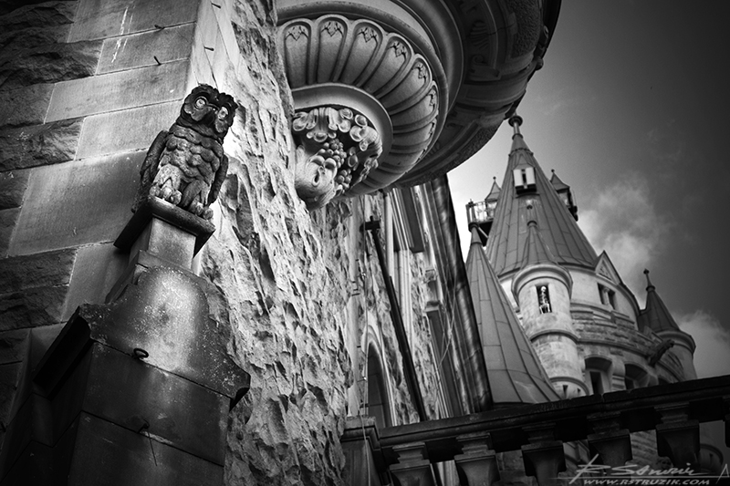 Zamek Moszna. Detale nastrajają niesamowicie - sowy, lwy, maszkarony... a w głębi po prawej szątki jednago z uwięzionych w wieży.